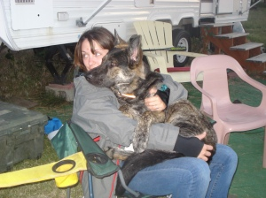 """This is the 8 month old """"baby"""" left in my care. He was in a crate and eventually calmed enough so I went kayaking."""