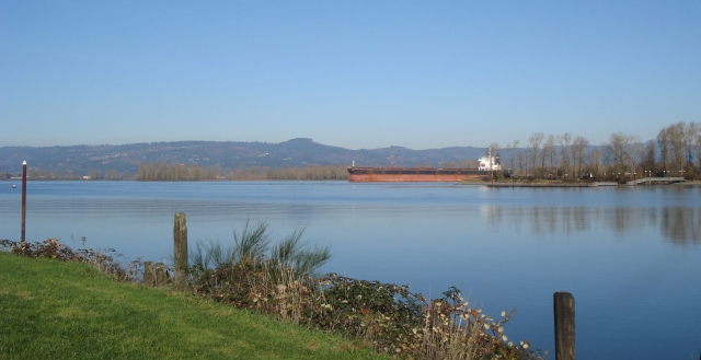 Looking west, with a large cargo ship in the channel on the Columbia - probably half a mile from where I took the picture.